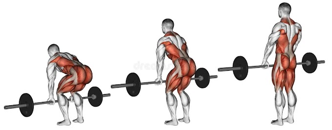 7 BEST BACK EXERCISES FOR BUILDING MUSCLE MASS