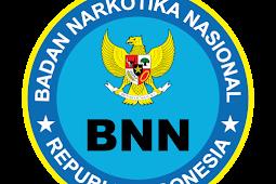 Download Logo BNN (Badan Narkotika Nasional) Vektor  AI