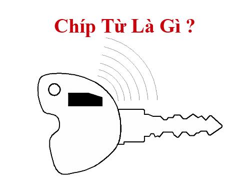 Chip-tu-la-gi