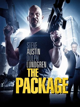 The Package 2013 Hindi Dubbed 480p 720p FilmyMeet