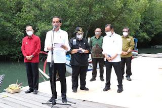 Presiden RI, Joko Widodo Kunjungi Pusat Konservasi Mangrove di Bali