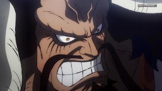 ワンピースアニメ ワノ国編 995話 | ONE PIECE 四皇 百獣のカイドウ | ONE PIECE  KAIDO