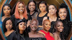 bbnaija season 6 female housemates