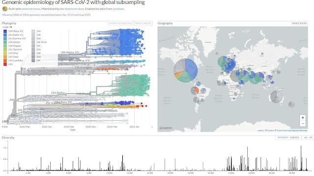 Map and timeline of genomic epidemiology of coronavirus