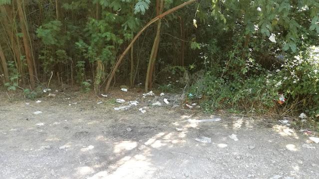 Lixo deixado na mata