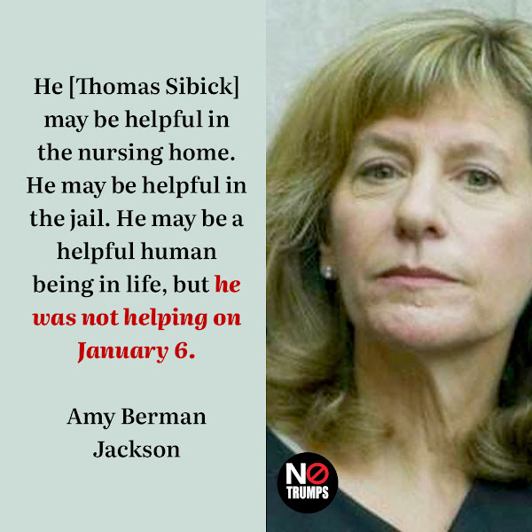 He [Thomas Sibick] may be helpful in the nursing home. He may be helpful in the jail. He may be a helpful human being in life, but he was not helping on January 6. — US District Judge Amy Berman Jackson