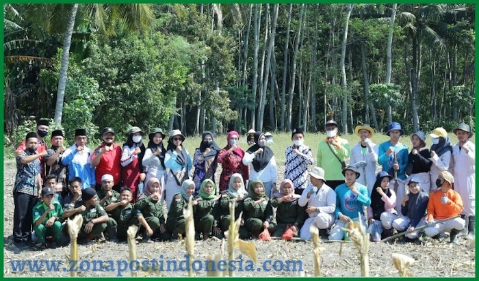 Ning Hj. Sitti Masyarafatul Manna Wassalwa, M.Pd., Tinjau Lokasi Penanaman Jagung Pertama Di Area Lingkungan Sawah SMK Manbaul Ulum Tangsil Wetan