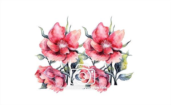 Vector Watercolor flowers 3d