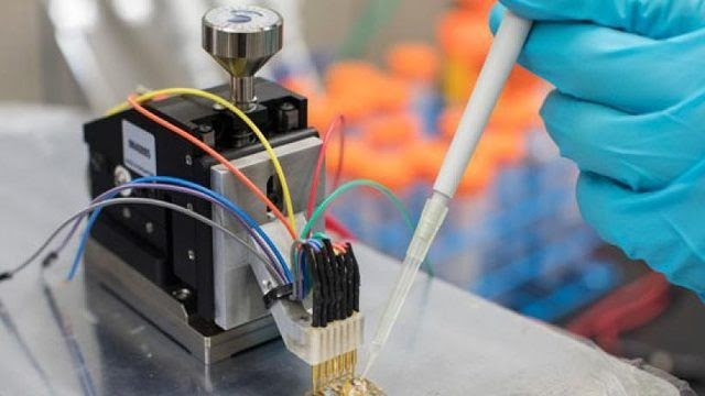 Cell Culture Monitoring Biosensors Market - Global Industry Analysis, Size, Share, Growth, Trends and Forecast 2017 - 2025