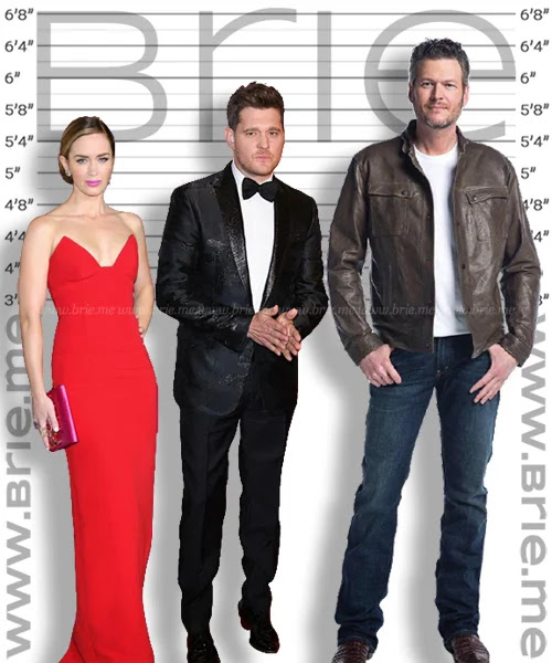 Michael Buble height comparison with Emily Blunt and Blake Shelton