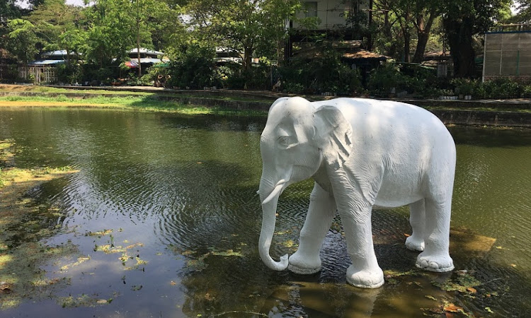 सफ़ेद हाथी - बर्मा की लोककथा | Safed Haathi - Burma ki Lokkatha