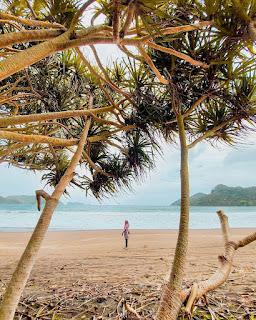 pantai Bandealit Taman Nasional Meru Betiri Jember