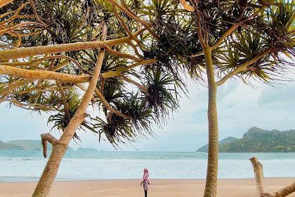 Pantai Bandealit, Wisata Alam di Meru Betiri Jember yang Terjaga Keasriannya