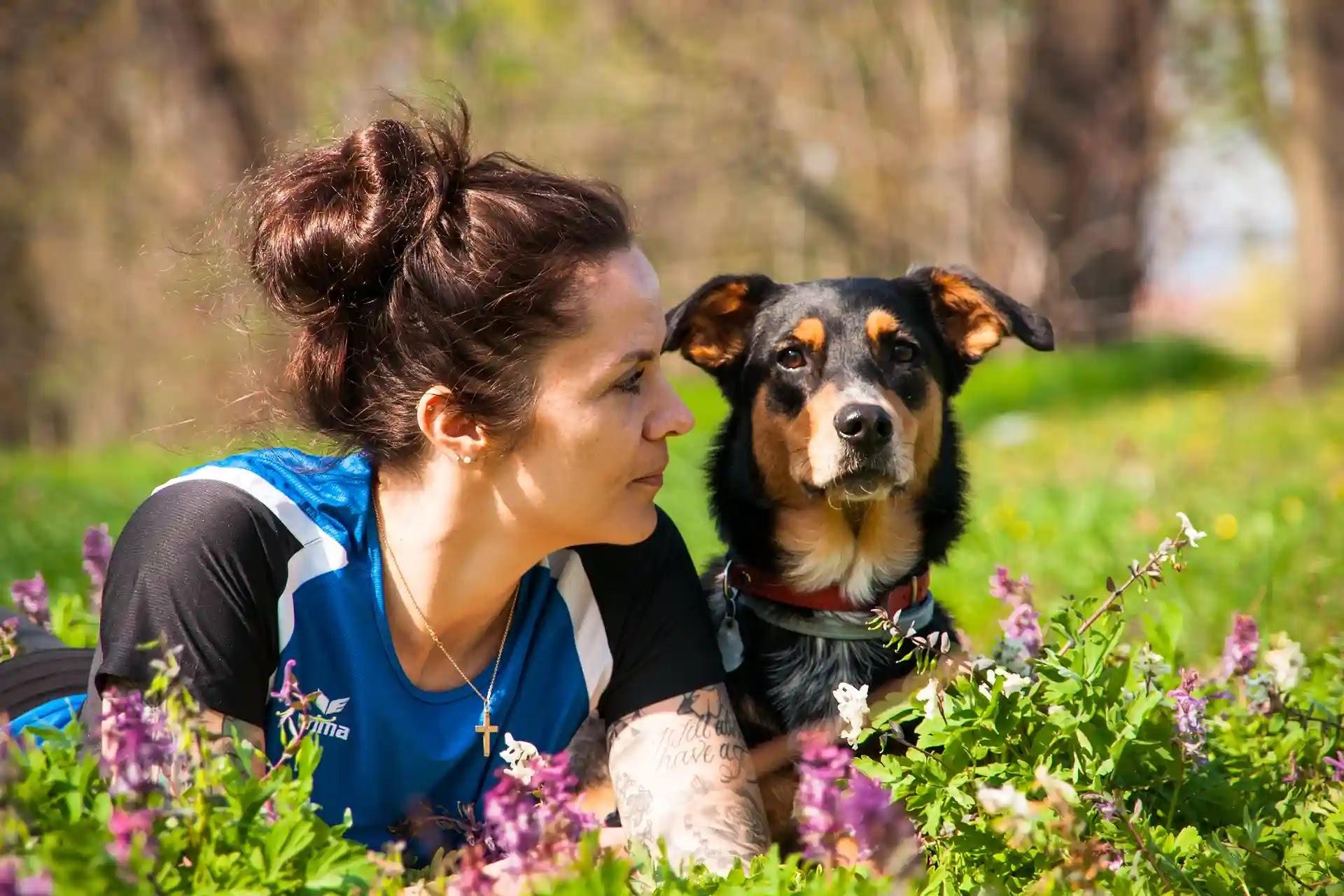 Dog Training Obedience School