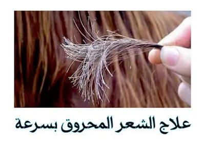 علاج الشعر المحروق من الفرد بطرق طبيعية منزلية