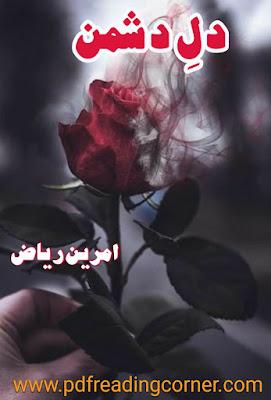 Dil e Dushman By Amreen Riyaz - PDF Book