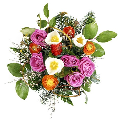 Express Your Feelings By Giving Simple Yet Profoundly Beautiful Flowers