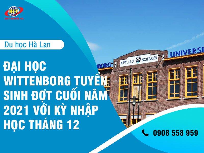Du học Hà Lan: Trường đại học Wittenborg tuyển sinh đợt cuối năm 2021 với kỳ nhập học tháng 12