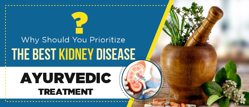 Why Should You Prioritize The Best Kidney Disease Ayurvedic Treatment?