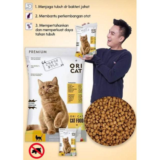 Kelebihan dan Kekurangan Makanan Kucing Ori Cat
