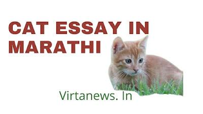 माझा आवडता प्राणी मांजर वर मराठी निबंध 10 lines on cat in marathi