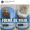 EM FEIJÓ: POLÍCIA MILITAR PRENDE MULHER COM DROGAS  NA RODOVIÁRIA DO MUNICÍPIO