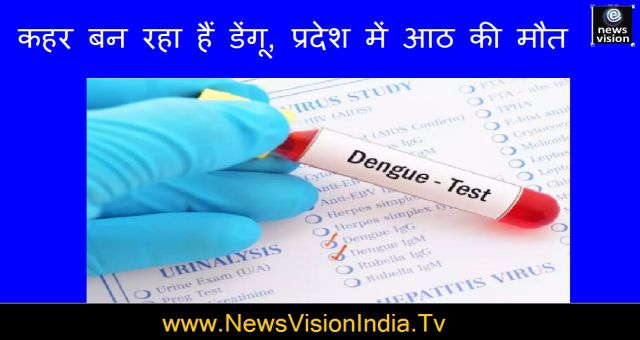 Dengue Is Causing Havoc Eight Deaths In The State Health Crises Rajasthan News