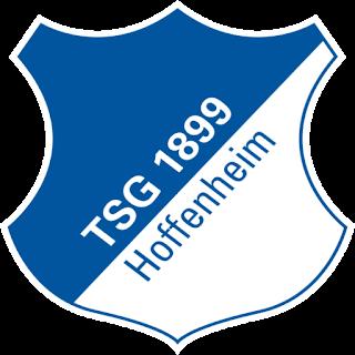 TSG Hoffenheim Logo PNG