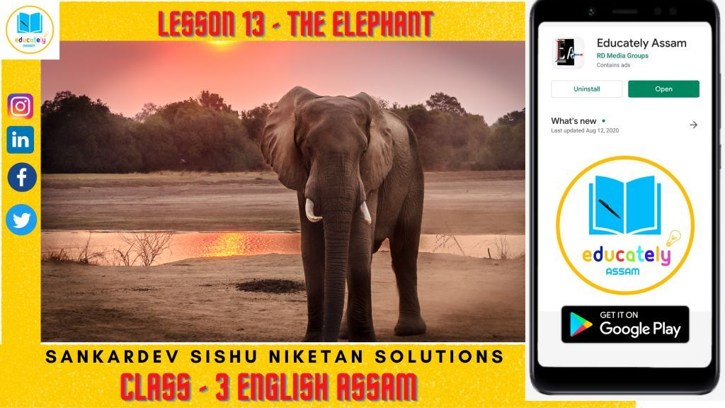 Lesson 13 | Elephant Walk  Questions Answers | Shishu Niketan solutions Assam