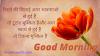 Good Morning in Hindi । Good Morning my Love ।  Good Morning Suvichar in Hindi ।  Good Morning Wishes । Good Morning Motivation । Good morning Whatsapp Image ।  Good Morning Shayari । Good Morning Quotes। Good Morning Thoughts