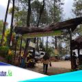 Keindahan Obyek Wisata Hutan Pinus Warudoyong Pakenjeng Garut Selatan