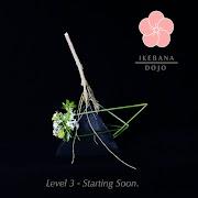 Level 3 - Starting Soon