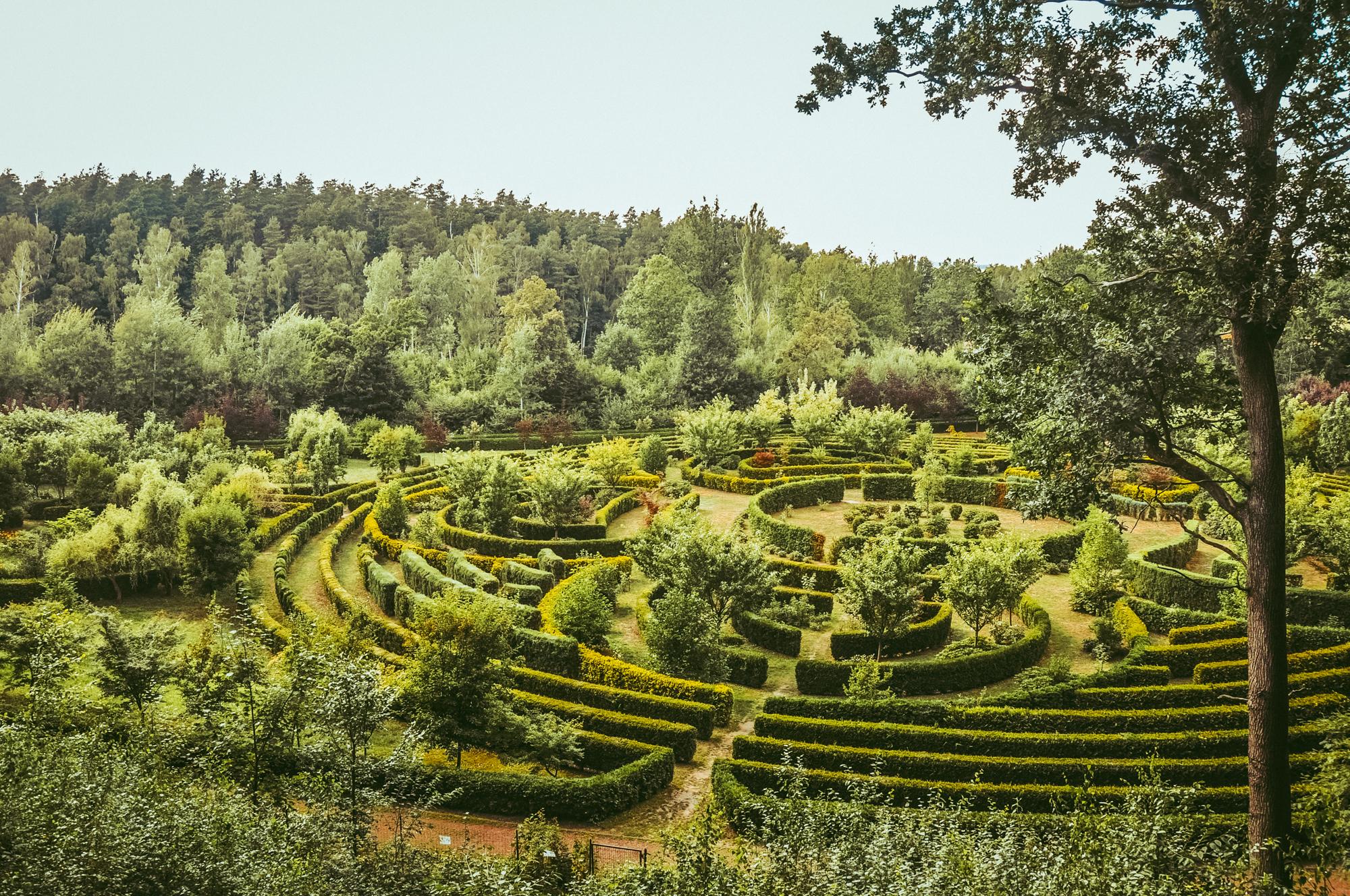 Arboretum Bramy Morawskiej Racibórz piękny ogród na spacer
