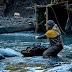 Discovery estreia nova temporada de Febre do Ouro: Corredeiras do Alasca