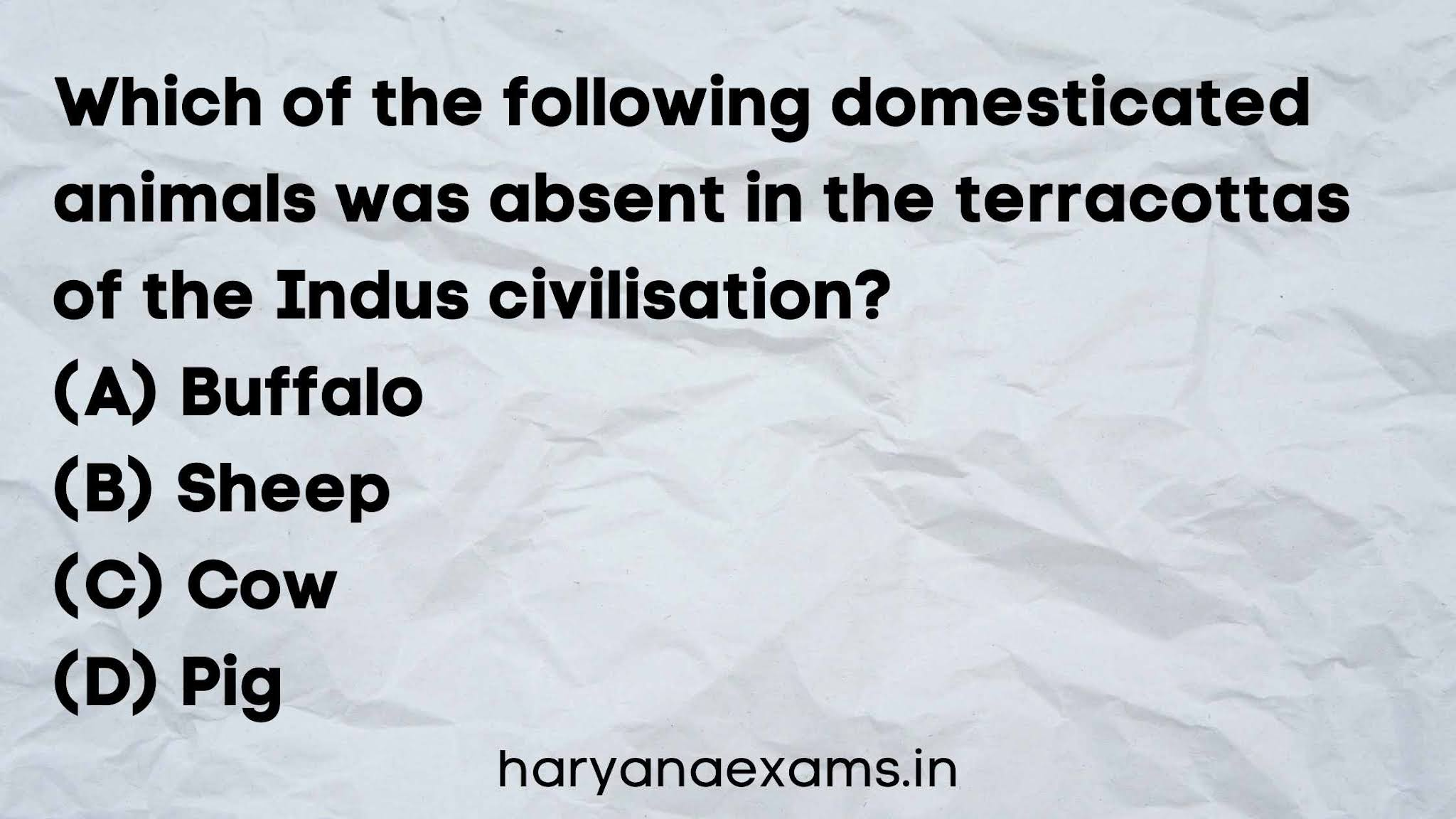 Which of the following domesticated animals was absent in the terracottas of the Indus civilisation?   (A) Buffalo   (B) Sheep   (C) Cow   (D) Pig