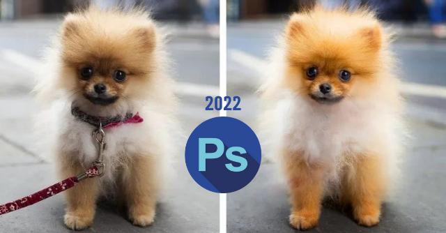 Adobe Photoshop تطلق العناصر الأولى من قائمة الميزات الجديدة 2022