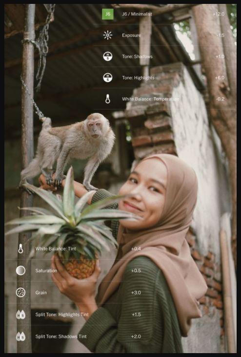 fitur vsco untuk buat foto ig aesthetic (Pinterest)