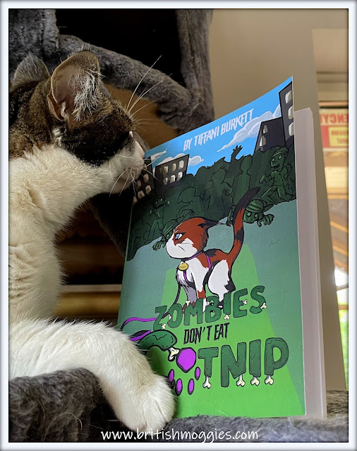 library cat reading book, cat reviewing book, cat reading zombie book, tabby cat,