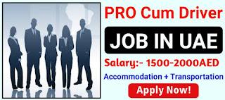 Recruitment Driver Cum Pro For DIC Factory  in Dubai