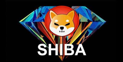 El inversor de 'The Big Short' Michael Burry descarta la cripto Shiba Inu como 'inútil', señalando que la oferta de la escisión de dogecoin supera el billón de monedas