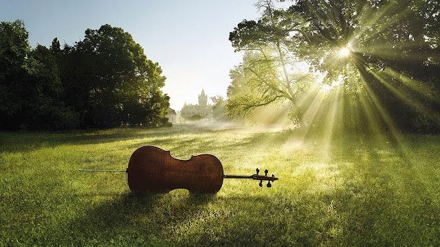 Целительное воздействие музыкотерапии