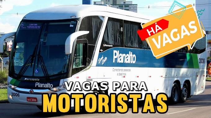 Viação Planalto abre vagas para 34 motorista rodoviário