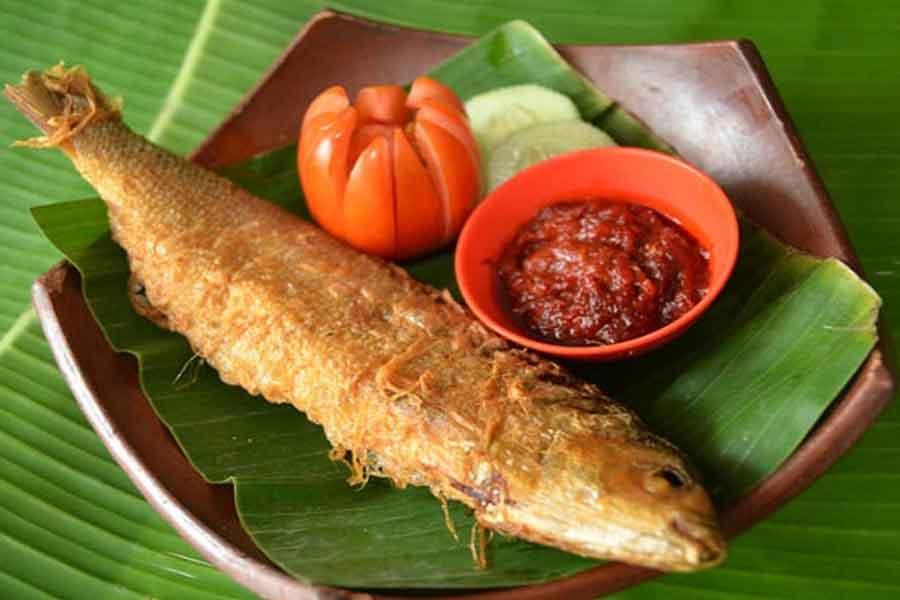 manfaat ikan bandeng untuk kesehatan tubuh