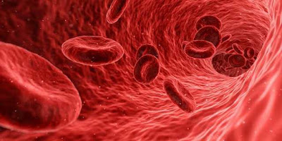 هل نقل الدم خطر؟