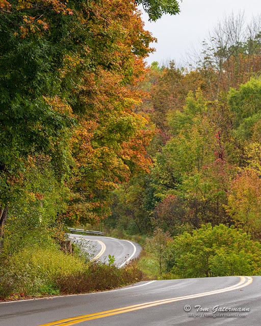Fall colors along twisting Thompson Road