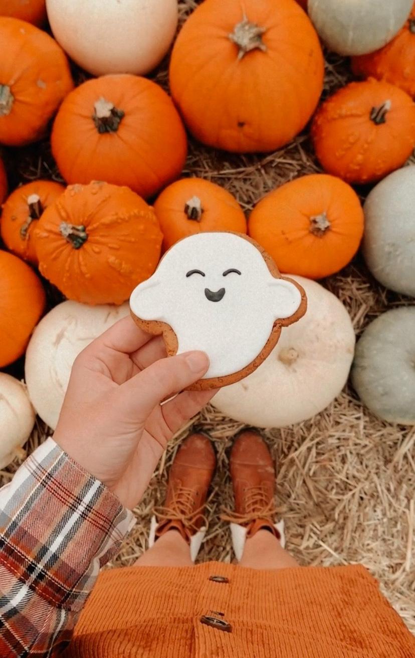10 Activites To Do This Autumn