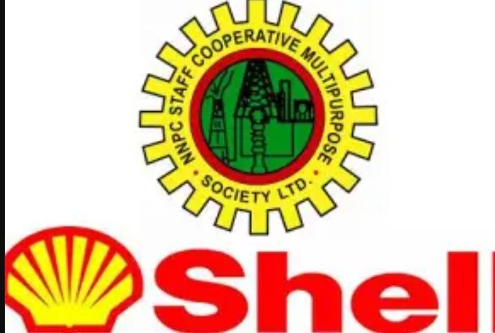 Shell Nigeria Exploration and Production Company Scholarship Awards / 2021 NNPC/SNEPCo National University Scholarship - Apply Here