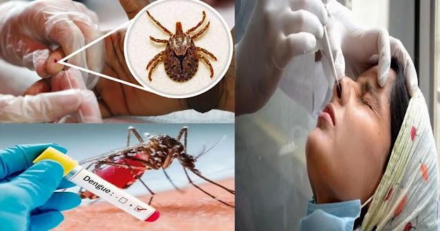 हिमाचल: कोरोना पर बीमारियों का डबल अटैक: एक जिले में डेंगू के 3-स्क्रब टाइफस के 7 केस आए