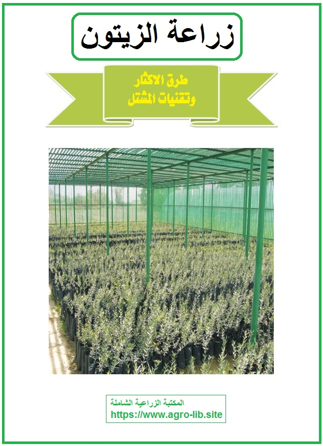 كتاب : زراعة الزيتون - طرق الاكثار و تقنيات المشتل -