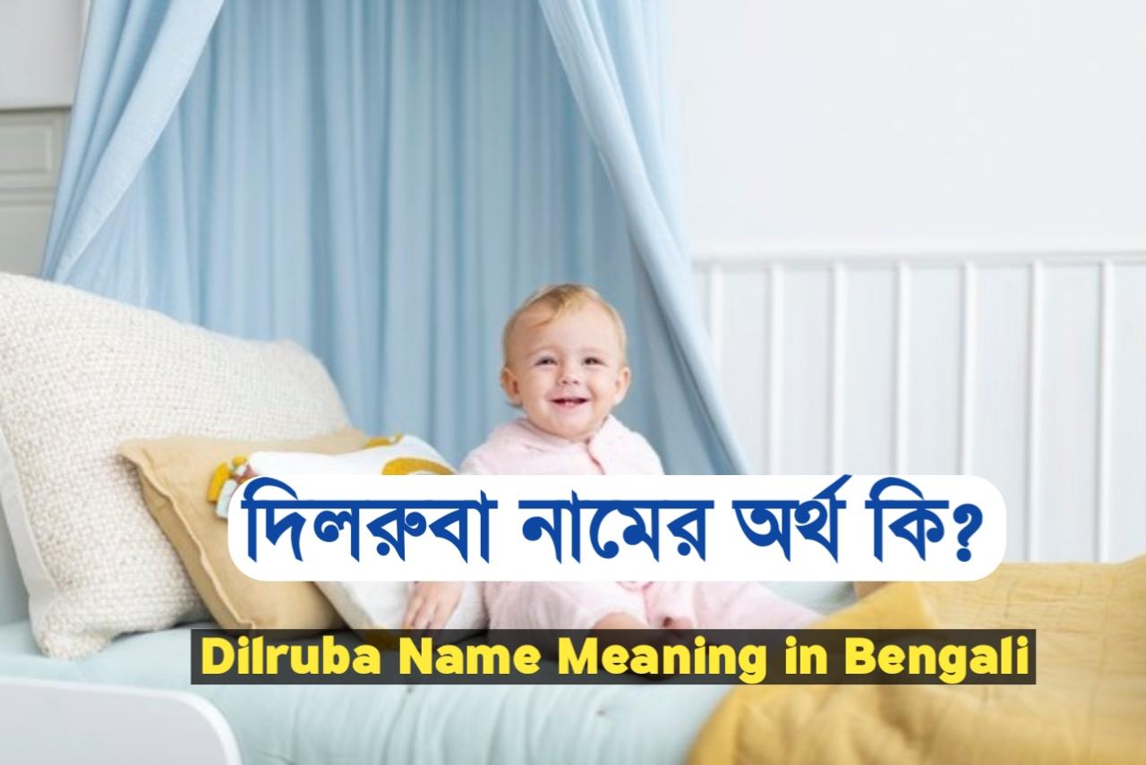 দিলরুবা শব্দের অর্থ কি ?, Dilruba, দিলরুবা নামের ইসলামিক অর্থ কী ?, Dilruba meaning, দিলরুবা নামের আরবি অর্থ কি, Dilruba meaning bangla, দিলরুবা নামের অর্থ কি ?, Dilruba meaning in Bangla, দিলরুবা কি ইসলামিক নাম, Dilruba name meaning in Bengali, দিলরুবা অর্থ কি ?, Dilruba namer ortho, দিলরুবা, দিলরুবা অর্থ, Dilruba নামের অর্থ